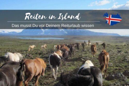 Reiten In Island