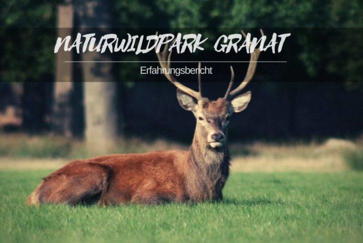 Naturwildpark Granat Haltern
