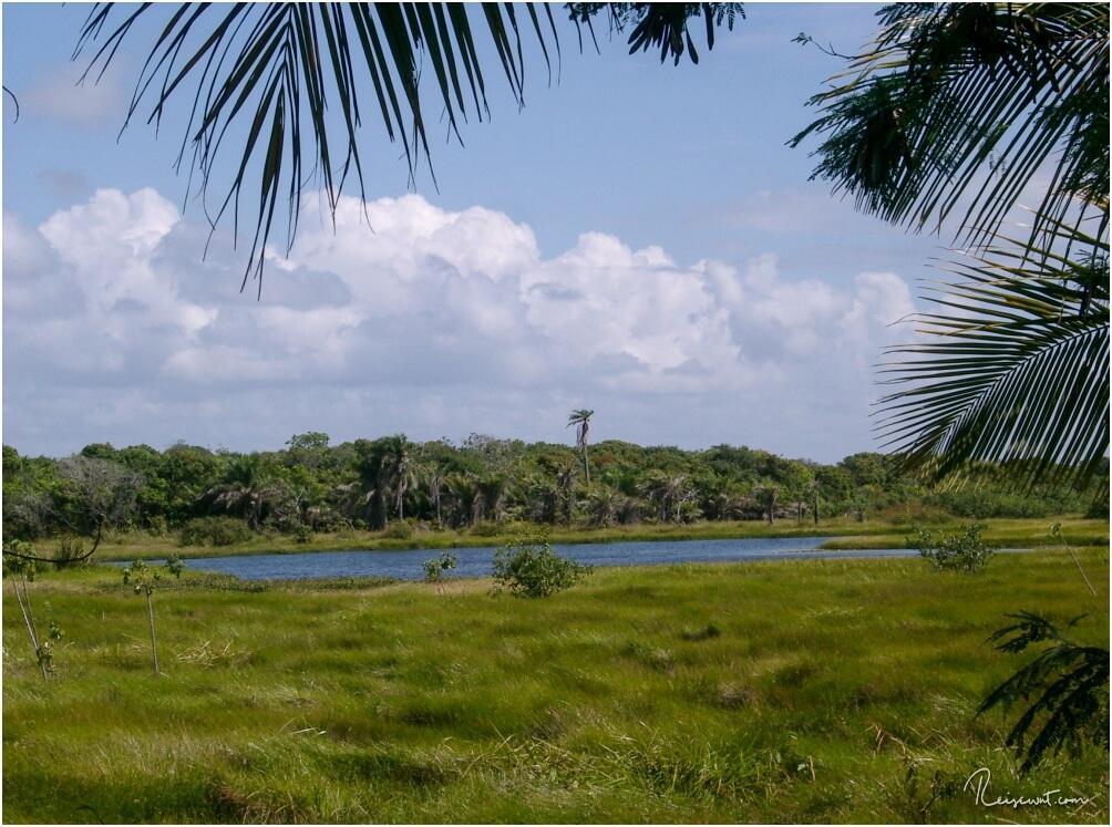 Die Lagoa Timeantube befindet sich nur unweit von Praia do Forte entfernt