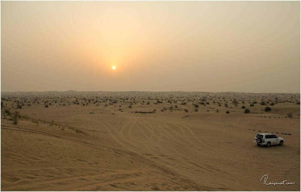Sonnenuntergang in der Wüste bei Dubai