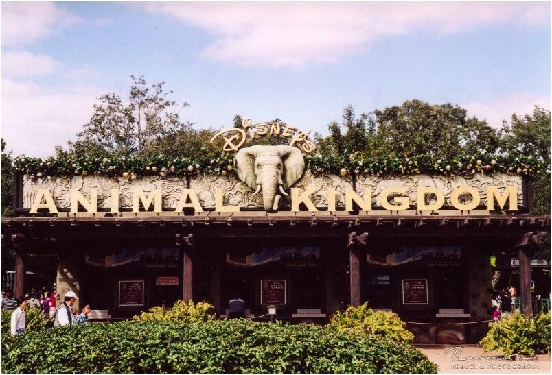Animal Kingdom, nur einer der Florida Theme Parks