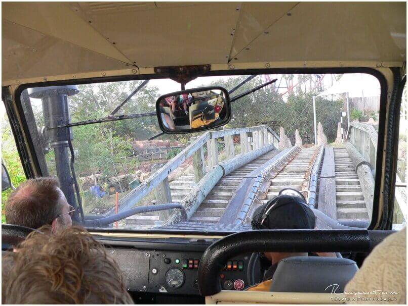 Auf der Rhino Ralley gibt es jede Menge Action und Tiere zu sehen