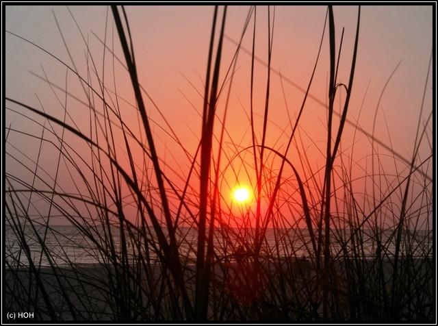 Sonnenuntergang in St.Pete