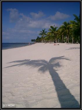 Einer der wenigen Strände auf Key West