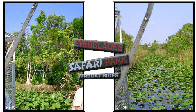 Tour in den Everglades