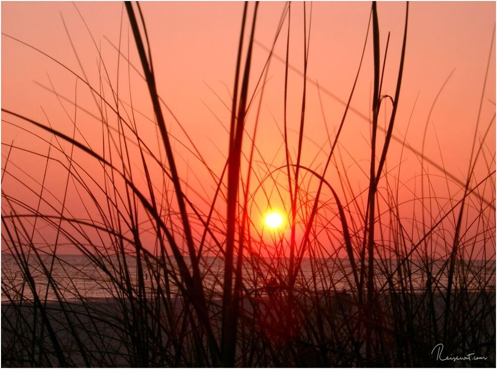 Nirgendwo geht die Sonne schöner unter als in Florida