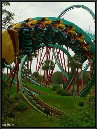Rollercoaster in Bush Gardens