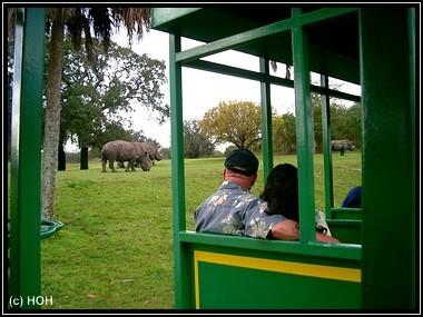 Zugfahrt durch die Serengeti Plain