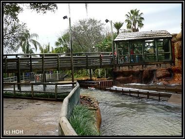 Tidal Wave ... die Brücke als iideale Dusch-Location