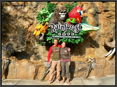Welcome to the Jungle ... Rainforest Cafe in Downtown Disney