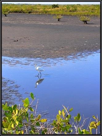 Nette Spiegelung im Wasser