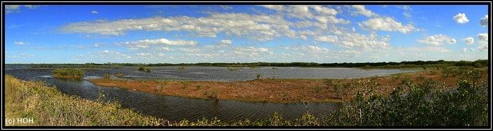 Wildlife Drive Panorama