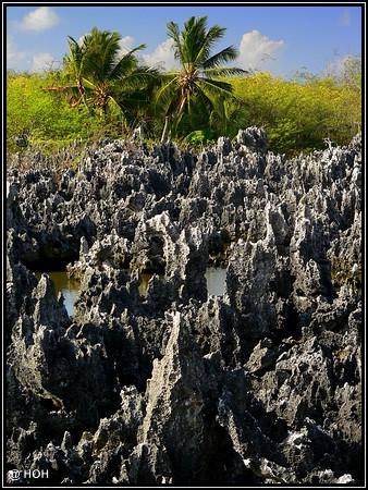 Die Hölle auf Erden ... auf den Cayman Islands