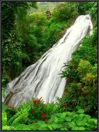 Wasserfall in Shaw Park Gardens