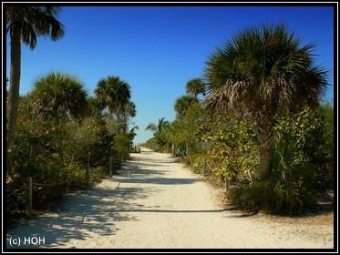 Der Weg nach Bowmans Beach