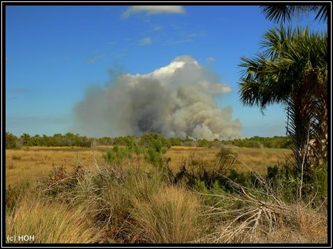 Feuer auf Merritt Island