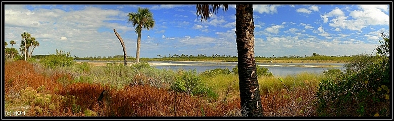 See am Scrub Ridge Trail im Merritt Island Wildlife Refuge
