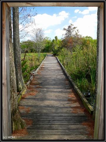 Hütte am Marsh Trail
