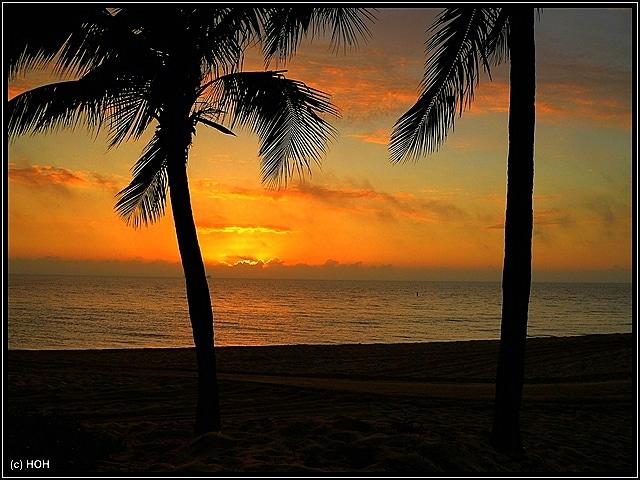 Sonnenaufgang am letzten Morgen in Ft.Lauderdale