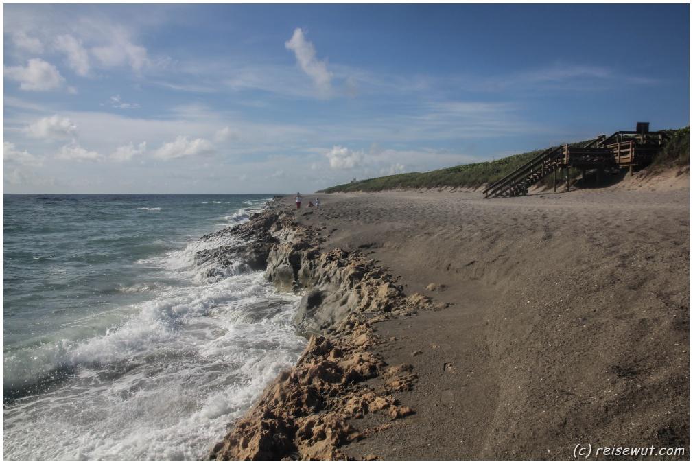 Der Strand der Blowing Rocks ist völlig untypisch für Florida