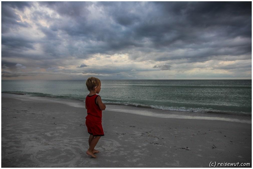 Fin's Beach