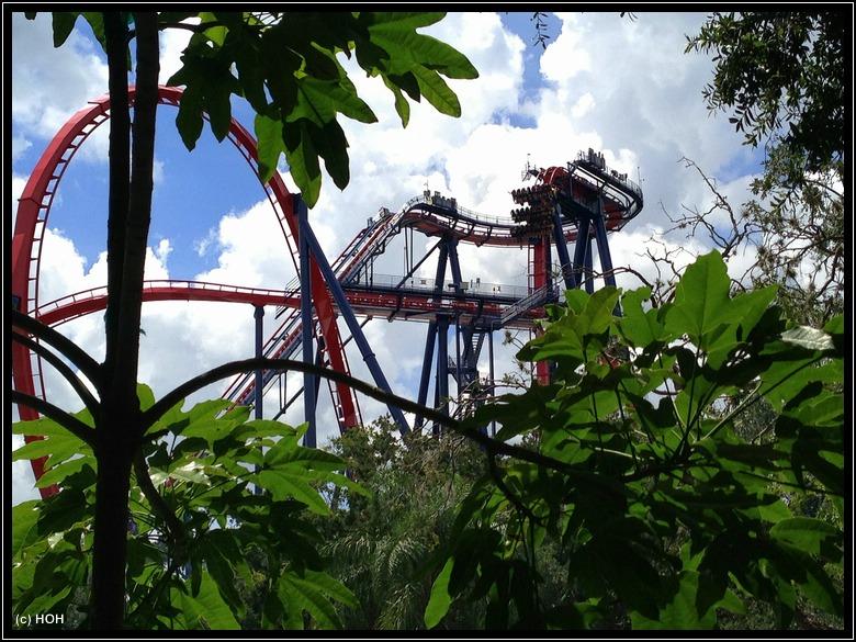 Sheikra im Busch Gardens Themepark
