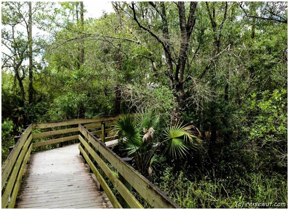 Boardwalk im Six Miles Cypress Slough Preserve