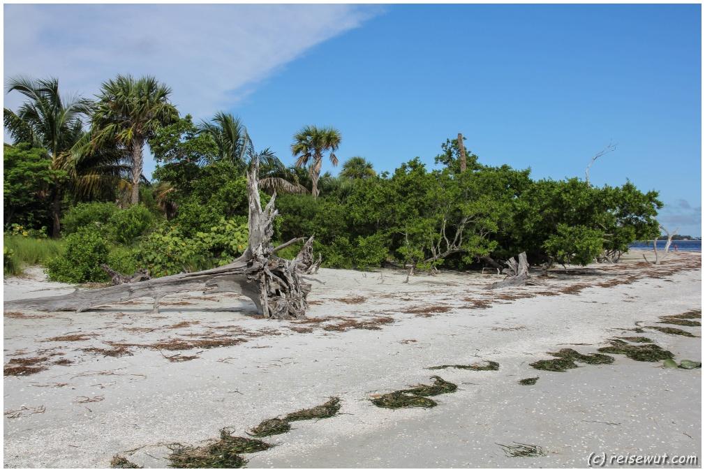 Auch das ist Florida, so sieht es auf Sanibel Island aus