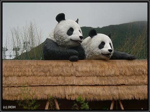 Eingang zum Pandagehege