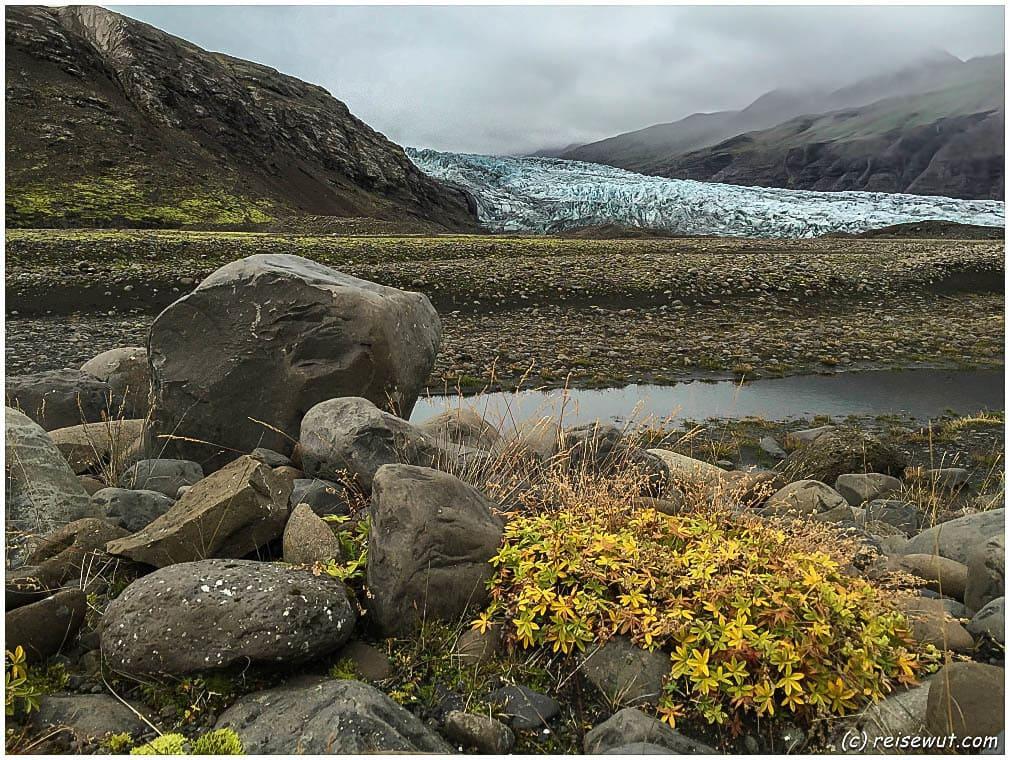 Flaajökull