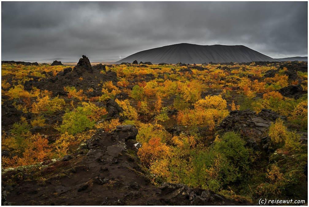 Diese Herbstfarben bei Dimmuborgir sind einfach unbeschreiblich