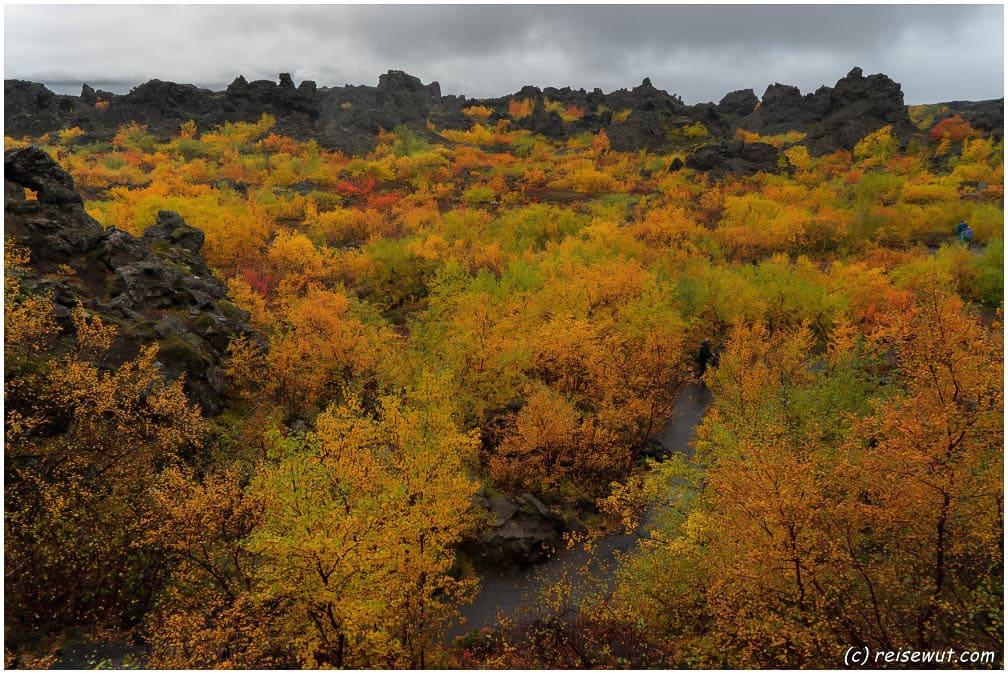 Herbstfarben in Dimmuborgir, schaut das nicht mal irre aus?
