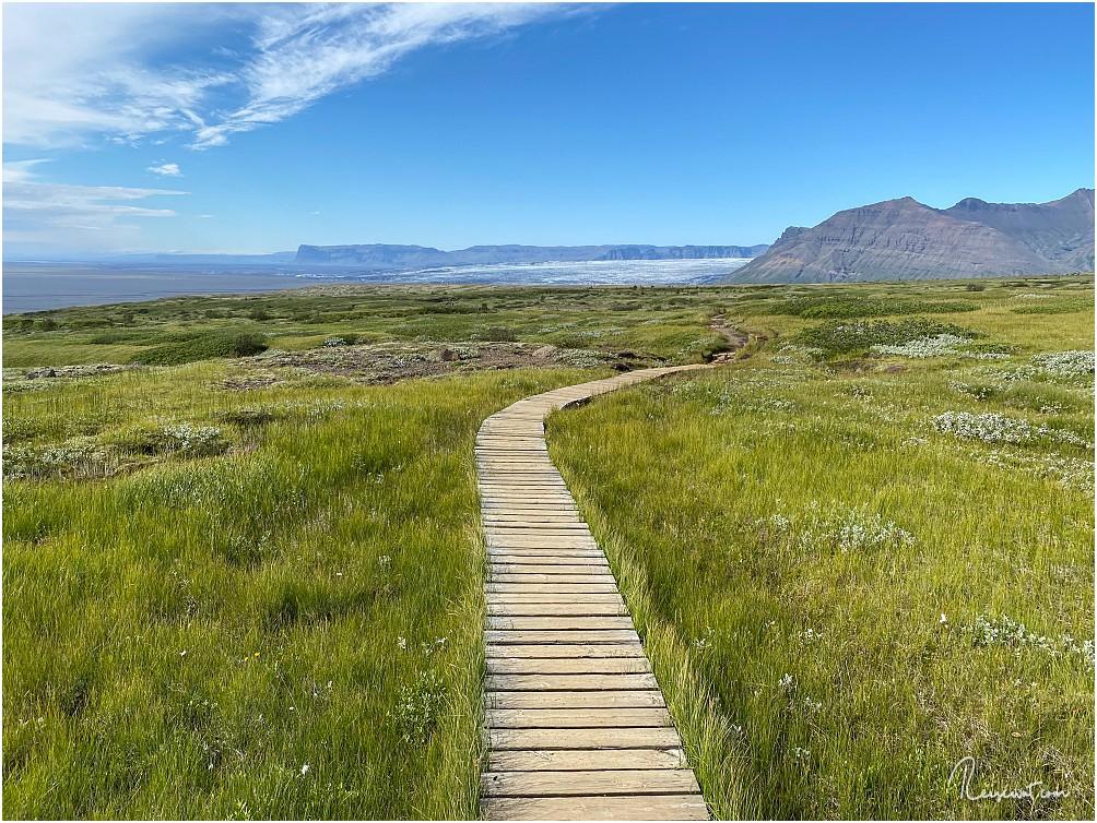 Der Brettersteg schützt einen vor nassen Füßen, da es eine regelrechte Sumpflandschaft ist hier oben