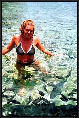 Fische gibt es zu Hauf