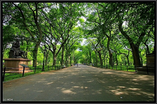 Die breiteste Strasse im Central Park - The Mall ... leergefegt