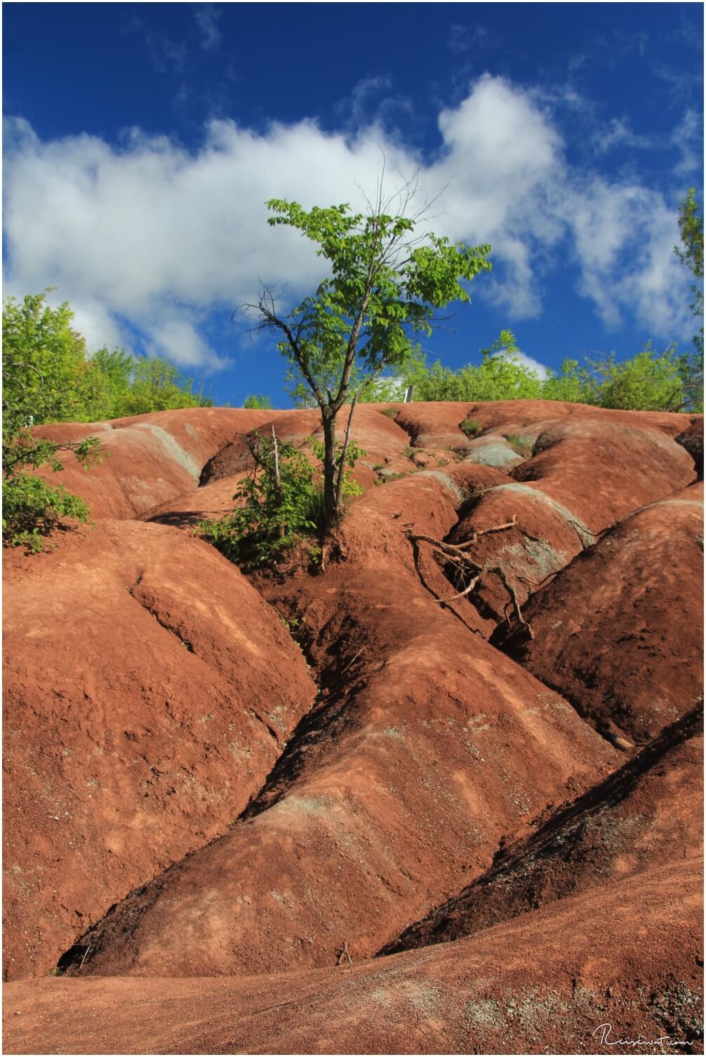 Beeindruckende Formationen in den Cheltenham Badlands