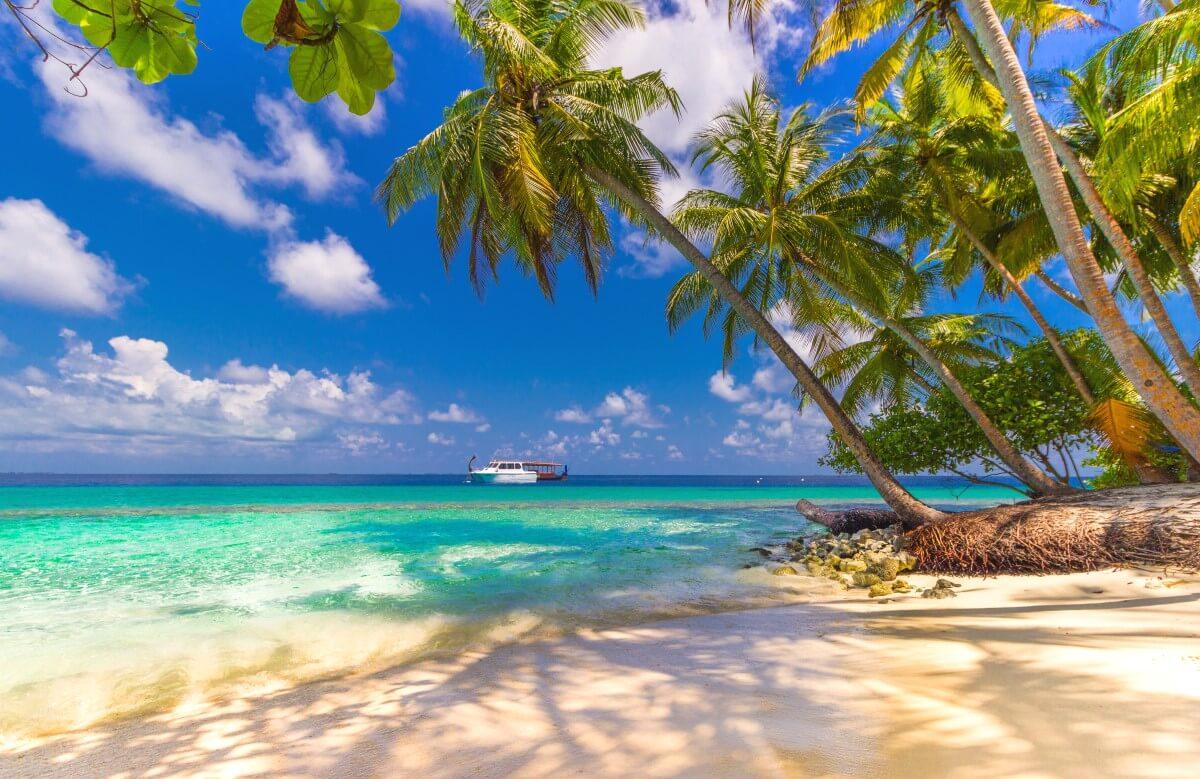 Vor ein paar Jahren ging ein großer Traum in Erfüllung: Ein Urlaub auf den Malediven.