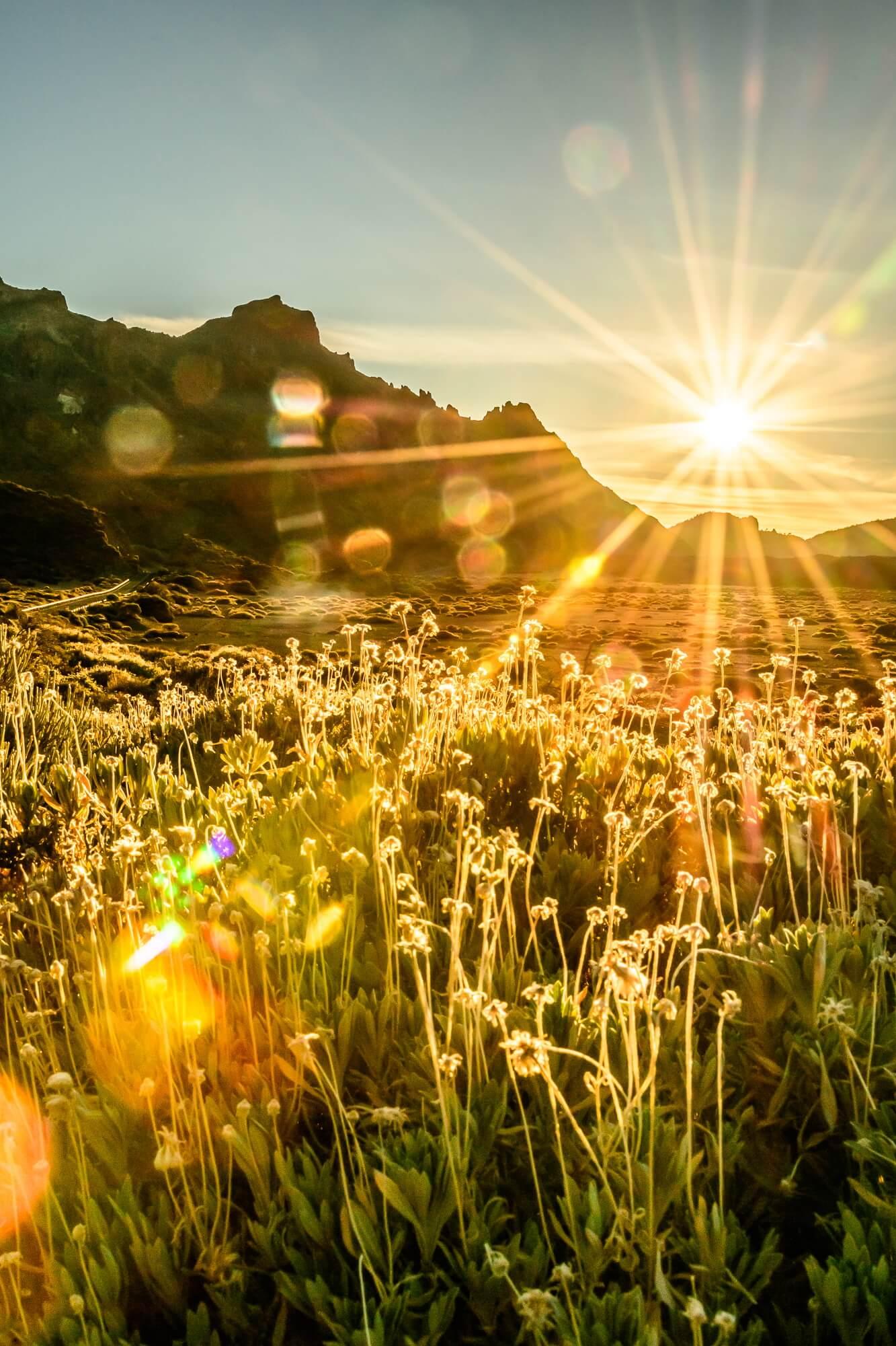 Teneriffa - Wir genießen den Sonnenuntergang am Vulkan Teide während wir auf den Automechaniker warten