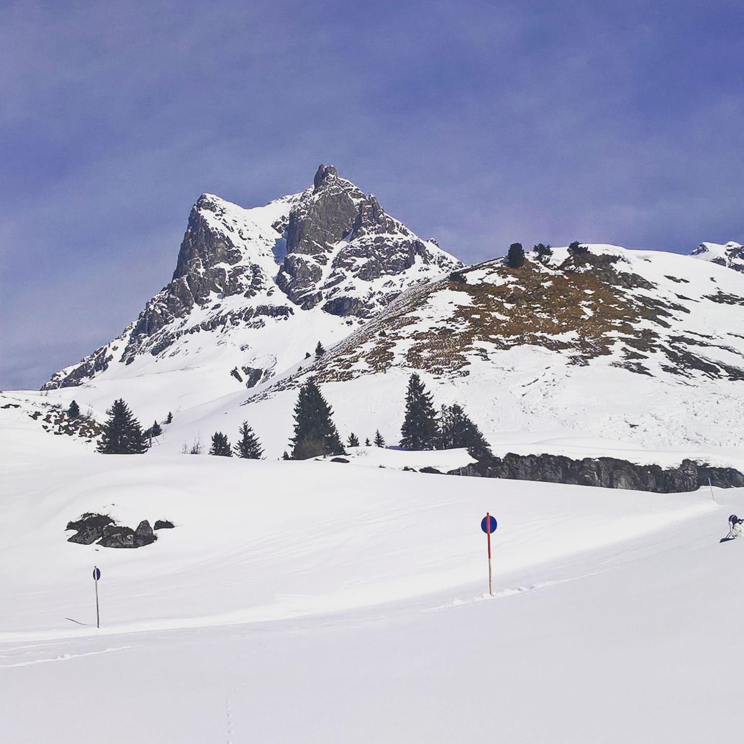 Widderstein im Winter