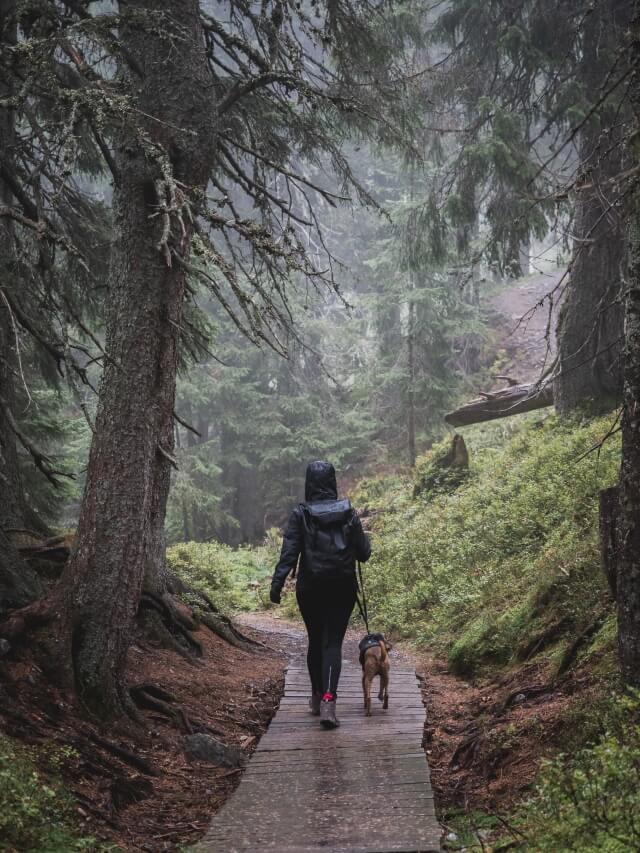 Wandern bei jedem Wetter auf dem Asitz in Leogang/Österreich.