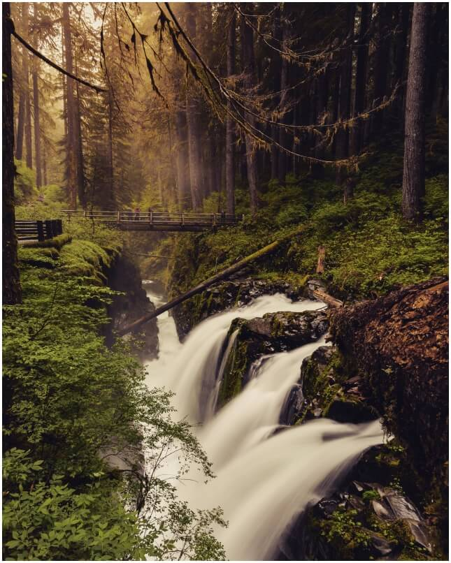 Sol Duc Falls im Olympic National Park