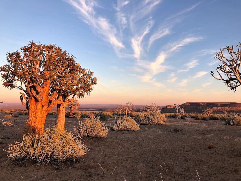 Frühaufsteher und daher liebe ich Sonnenaufgänge. Wenn sie noch dazu in faszinierender Umgebung – wie hier in Namibia stattfinden – umso schöner