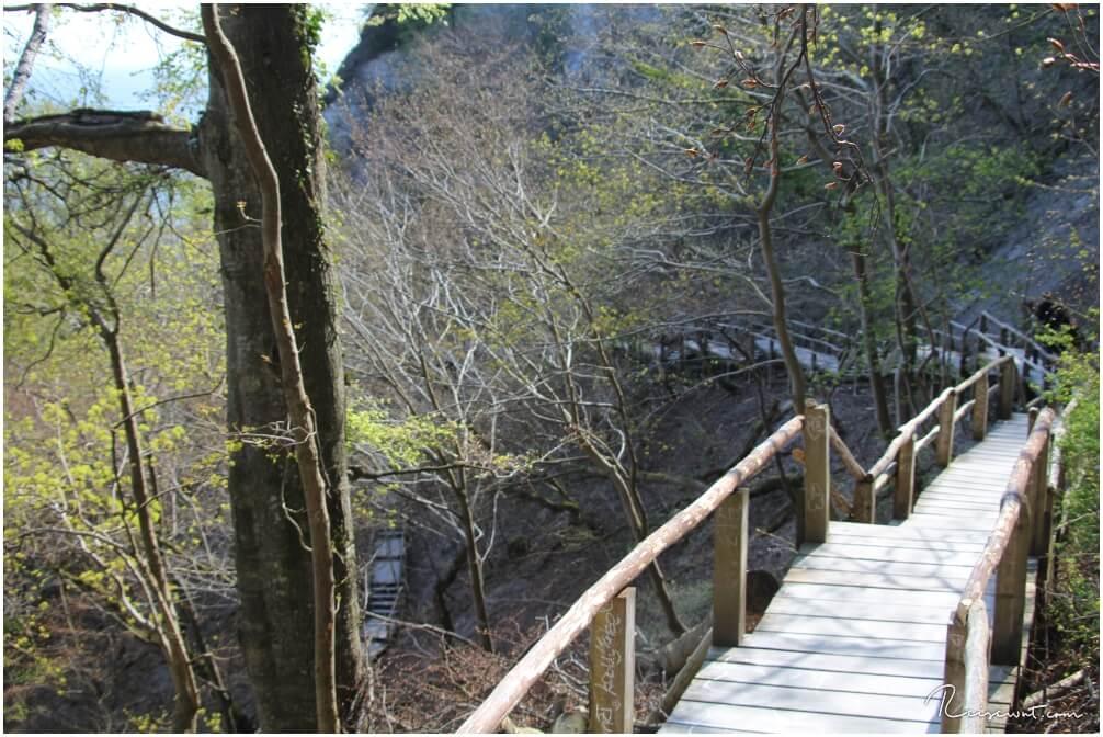 Über diesen hölzernen Pfad mit 412 Stufen kommt man runter zum Strand unterhalb des Königsstuhls