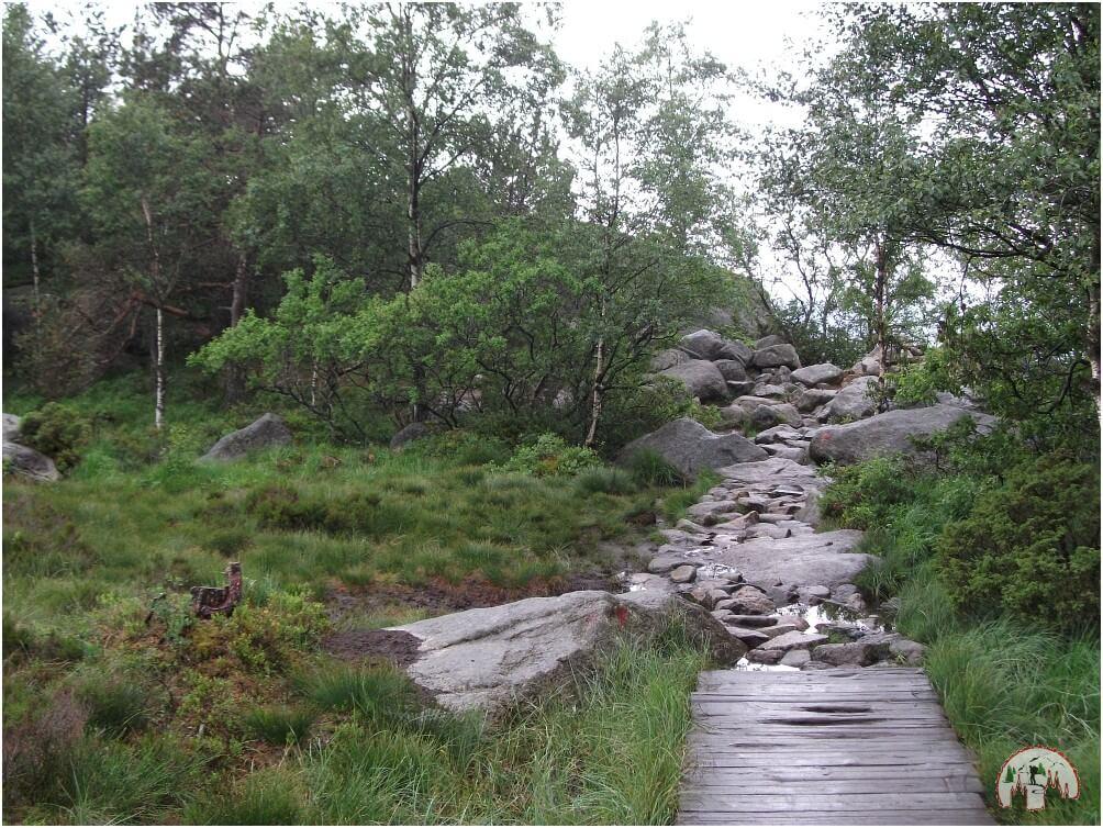 Holzbohlenweg auf der Wanderung zum Preikestolen