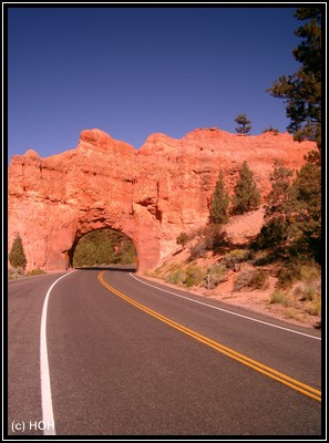 Im Red Canyon