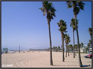Entspannung nach dem Hinflug Los Angeles ... der Strand von Venice Beach