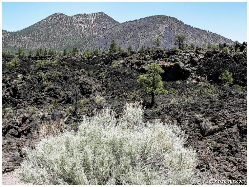 Lavafeld beim Lenox Crater