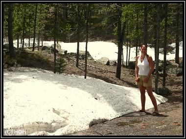 Im Bighorn National Forest liegt noch Schnee