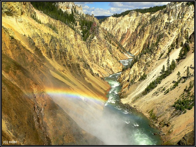 Blick bei den Lower Falls in den Grand Canyon of the Yellowstone