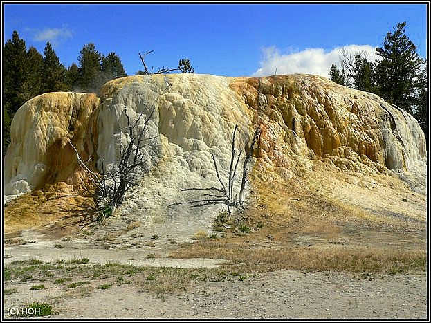 Orange Spring Moud, Mammoth Hot Springs